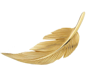 SDfeather
